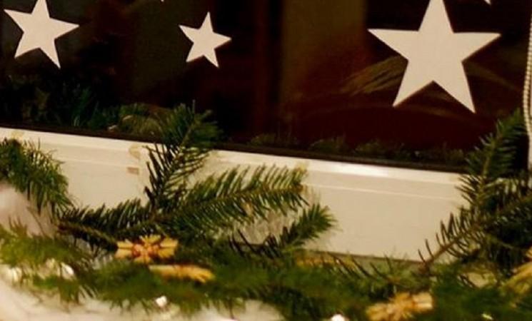 Parsinešk Kalėdas į savo namus: miškininkai dalins eglių šakas!